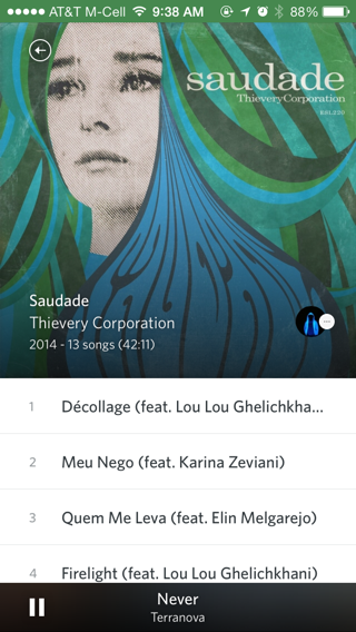Rdio iPhone detail views, music screenshot